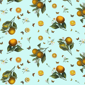 Oranges and Orange Butterflies on Mint Blue