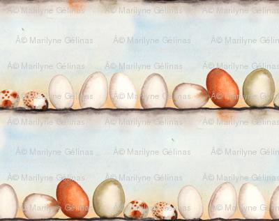 Coco Eggs