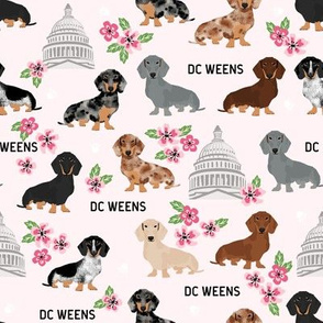 DC capitol dachshund dog breed fabric cherry blossoms pink