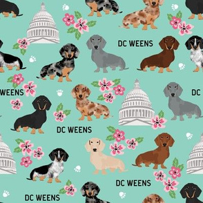 DC capitol dachshund dog breed fabric cherry blossom mint