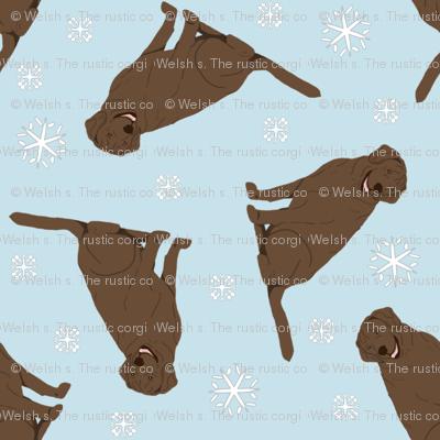Tiny Chocolate Labrador Retrievers - winter snowflakes