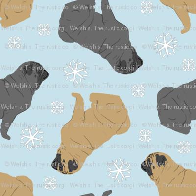 Tiny Pugs - winter snowflakes