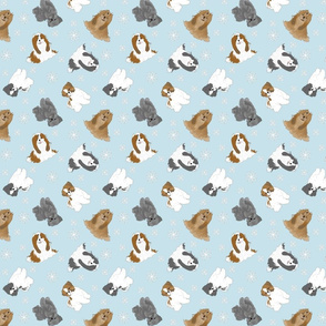 Tiny Shih Tzus - winter snowflakes