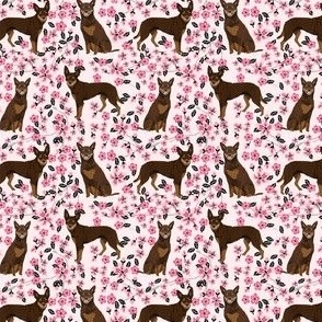 australian kelpie fabric red kelpie design - flowers cherry blossoms