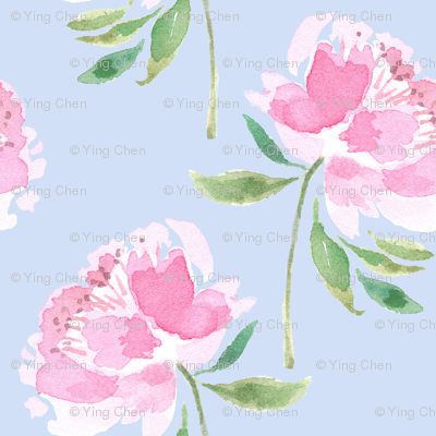 Peonies_on_solid_blue_preview