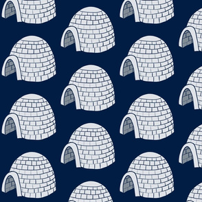 Igloo on oxford blue