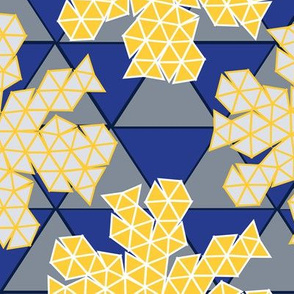 Geodesic Flat Pack_limited_palette