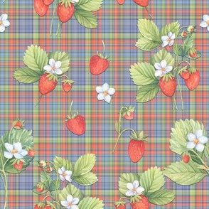 WATERCOLOR STRAWBERRIES ON MINI BLUE PLAID