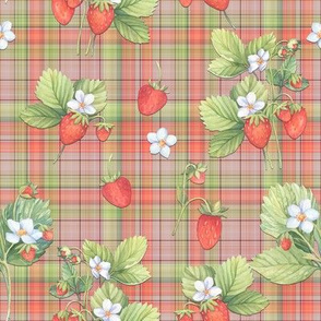WATERCOLOR STRAWBERRIES ON CORAL PLAID