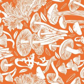 Delicious Autumn botanical poison // orange background white mushrooms