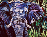 Rpurple_bush_elephant_ed_thumb