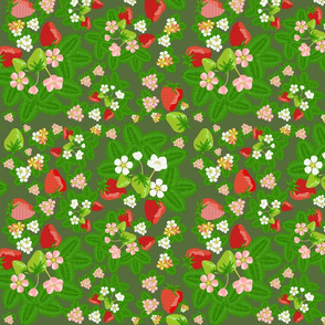 strawberry_patch_blooms_disperse