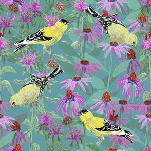 bee_balm_and_cone_flowers_and_gold_finches_off_set_hG