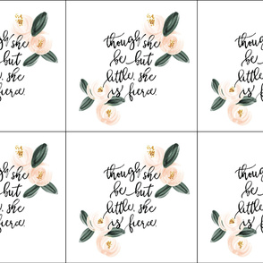 6 loveys: though she be but little she is fierce // peach watercolor rosette