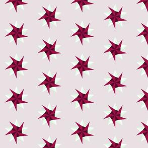 Magenta Stars