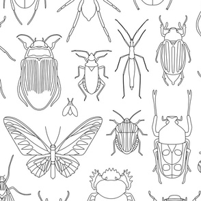 Bugs Coloring Design