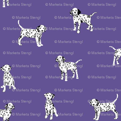 Dalmatian Puppies on Ultra Violet Backgroung