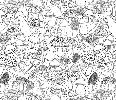 All The Mushrooms on White fabric by paisleyhansen on Spoonflower - custom fabric