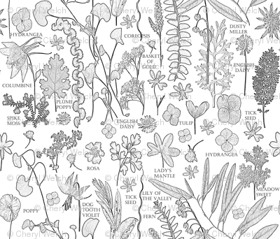 Colorbook Botanicals