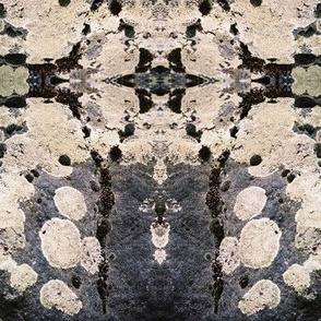 LICHENS_ON_GREYSTONE-MIRRORED