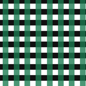 Plaid in Teal and Black