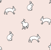 white_rabbits_on_pink