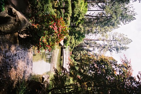 Rrrjapanese_garden_tea_towel_1_large_shop_preview