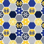 winter hexagons