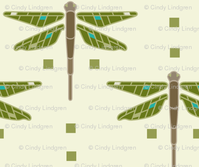 Dragonfly & Squares