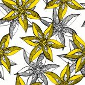 Rrrrlove_blooms_-_white_on_cucumber_by_rhonda_w._shop_thumb
