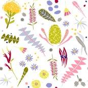 Raustralian_botanica_white_background_shop_thumb