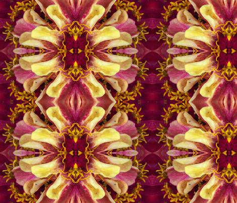 Symmagery Burgundy Zinnia fabric by tara_symmagery on Spoonflower - custom fabric