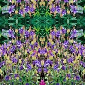PURPLE_BLOOMS-MIRRORED