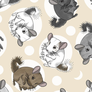 Chinchillas and moon dots - large tan