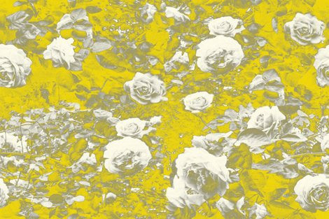 Rroses_grey_n_yellow_wrpd_27x18_shop_preview