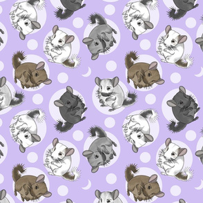 Chinchillas and moon dots - medium purple