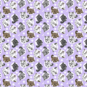 Chinchillas and moon dots - small purple