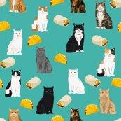 Rcats_and_tacos_shop_thumb