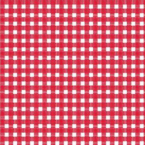 Mini Gingham Block Print in Red
