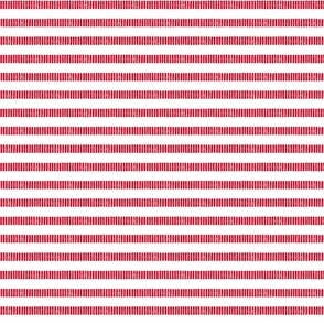 Skinny Striped Line Block Print in Red