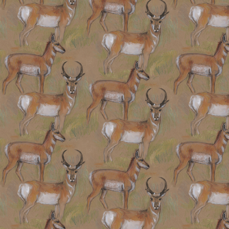 Pronghorn Antelope Buck and Doe fabric by eclectic_house on Spoonflower - custom fabric