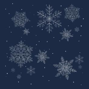 White snowflakes on night background