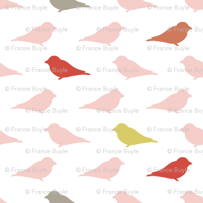 Modern birds small print in coral pink