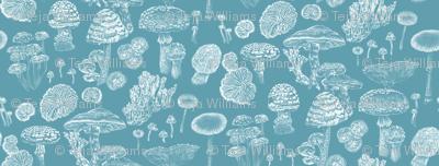 Mushrooms Blue White