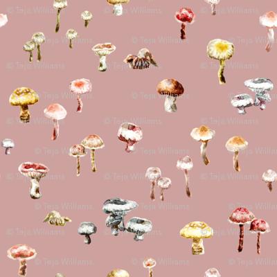 Little Mushrooms Blush Watercolour