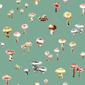 Rmushrooms_colour_7cm_repeat_green_shop_thumb