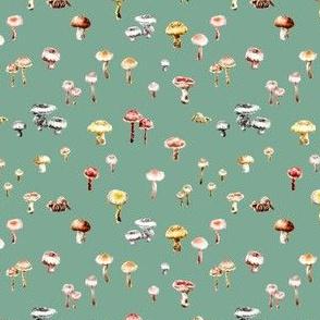 Little Mushrooms Watercolor Sage Green