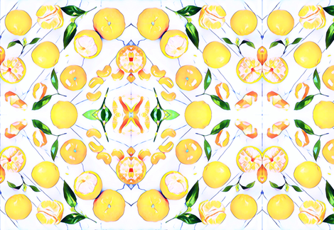 orange you glad to see me fabric by floraryfabrics on Spoonflower - custom fabric