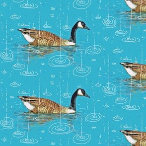 geese in the rain