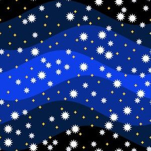 06918981 : starry winter night sky